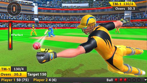 Indian Cricket League Game - T20 Cricket 2020 4 screenshots 21
