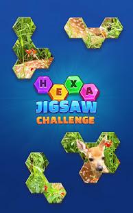 Hexa Jigsaw Challenge