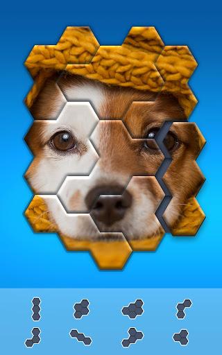 Hexa Jigsaw Puzzle u00ae 44.01 screenshots 9