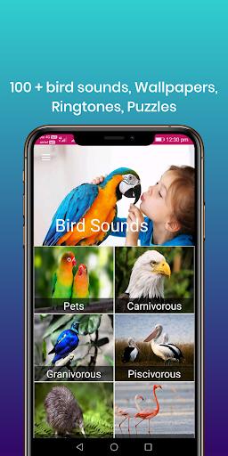 100 bird sounds : ringtones, wallpapers screenshot 1