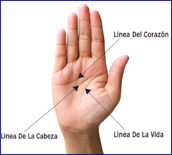 Palmistry Course. 👋How to read the hand