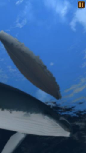 Moby Dick  screenshots 20