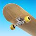Flip Skater Icon