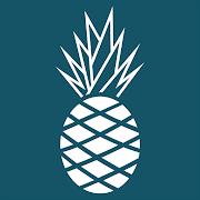 Hawaiian Bros