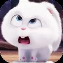 Cute Rabbit Snowball Stickers WaStickerApps