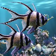The real aquarium - Live Wallpaper  Icon
