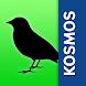 Birds of Europe: Identification, habitat, calls