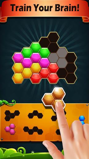 Block Hexa Puzzle 2021 screenshots 4