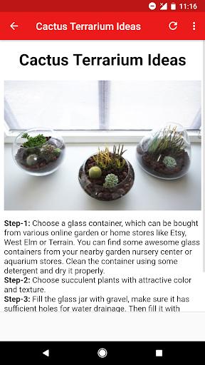 Terrarium Ideas  Screenshots 6