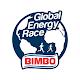 GER: Global Energy Race para PC Windows