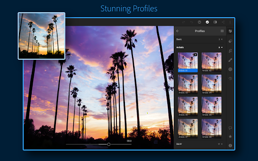 Adobe Lightroom - Photo Editor & Pro Camera 6.1.0 screenshots 12
