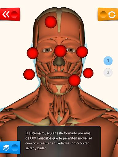 Educa Explorer Cuerpo Humano For PC Windows (7, 8, 10, 10X) & Mac Computer Image Number- 17