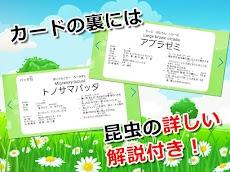 昆虫カード 子供向け図鑑 教育・知育・英語のおすすめ画像4