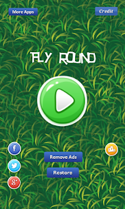 Fly Round – avoiding eagle Hack Game Android & iOS 2