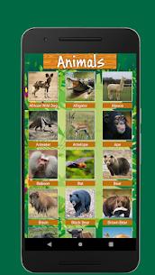 100 Animals and Birds Sound 3