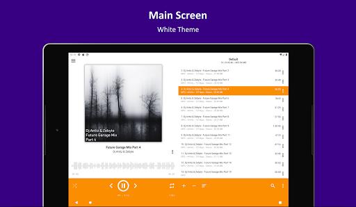 AIMP v3.10, build 1030 (19.12.2020) Screenshots 9