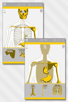 あそんでまなべる 人体模型パズルのおすすめ画像2