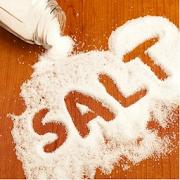 SALT Cambodia