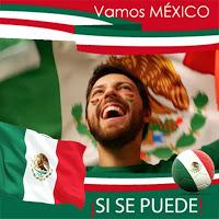 Mexico flag photo editor