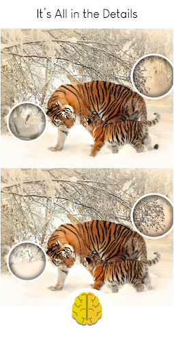 Find The Difference - Brain Differences Puzzle  Screenshots 10