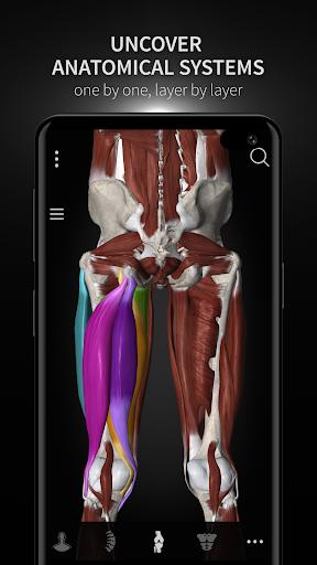 Anatomyka - 3D Human Anatomy Atlas 2.1.5 Screenshots 8