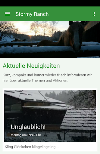 reiterhof stormy horse ranch screenshot 1