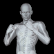 360° Anatomy for Artists: Male - Androidアプリ