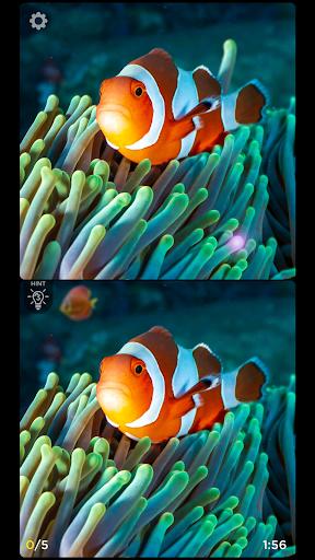 Spot the Difference - Insta Vogue 1.3.16 screenshots 4