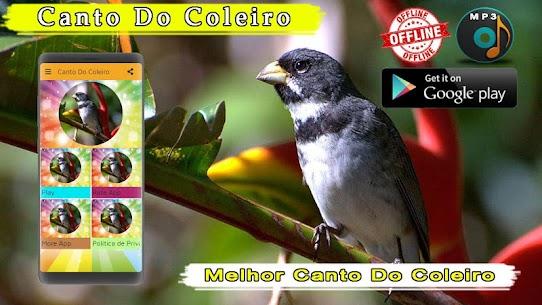 Canto De Coleiro 1.3 MOD Apk Download 2