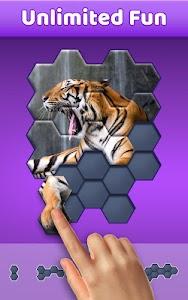 Hexa Jigsaw Puzzle ® 44.01