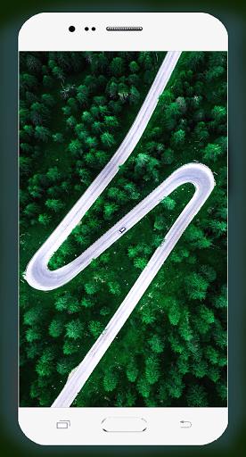 Forest Wallpaper HD Screenshots 15