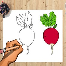 How to Draw Beetroot And Other Vegetables Easily APK