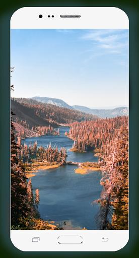 Forest Wallpaper HD Screenshots 14