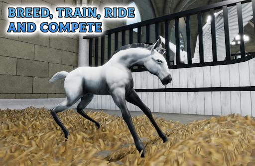 Horse Academy 6.99 screenshots 12