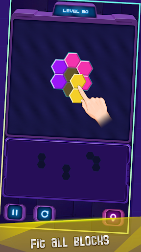 Hexa Puzzle 1.0.100020 screenshots 12