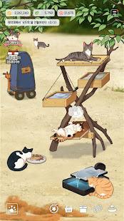 Fish Farm Cats
