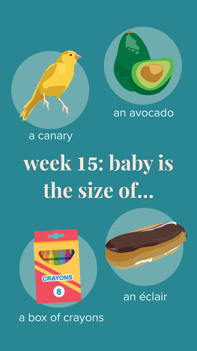 Ovia Pregnancy Tracker: Baby Due Date Countdown 2.8.1 Screenshots 7