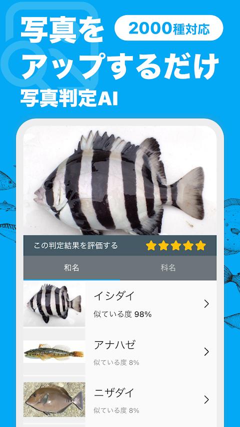 魚みっけのおすすめ画像2