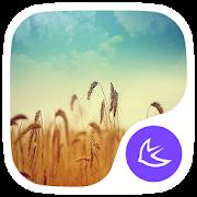 Dreams-APUS Launcher theme