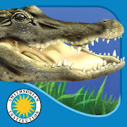 App Icon for Alligator at Saw Grass Road App in United States Google Play Store