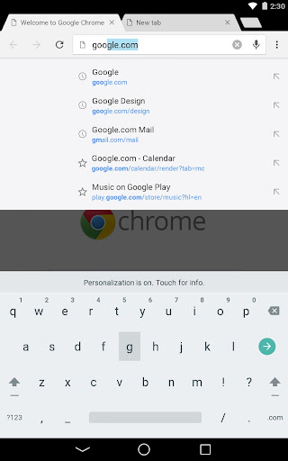 Chrome Canary (Unstable)  screenshots 11