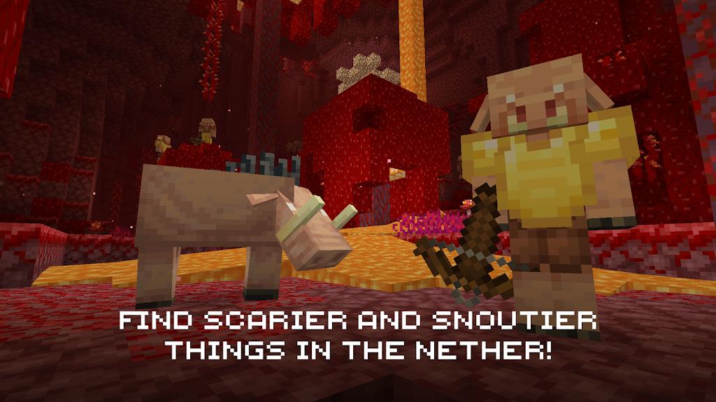 Minecraft  poster 4