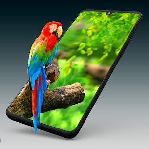 Live Wallpapers 4k & HD Backgrounds by WAVE 4.2.2 APK + MOD (Unlocked) 1
