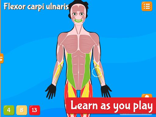 Anatomix - Human Anatomy screenshots 18