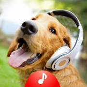 Animal Sounds Ringtones Free