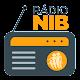Rádio NIB para PC Windows