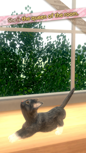 with My CAT 1.2.0 screenshots 2