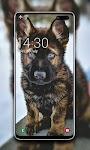 screenshot of Puppy Wallpaper 🐶