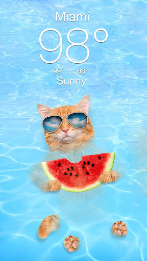 Weather Kitty - App & Widget Weather Forecast  screenshots 2