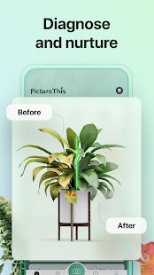 PictureThis: Identifiez les plantes, les fleurs, les mauvaises herbes et plus encore